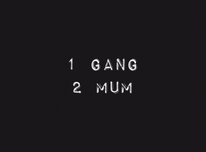 2 mum, l'histoire de Mum And the Gang